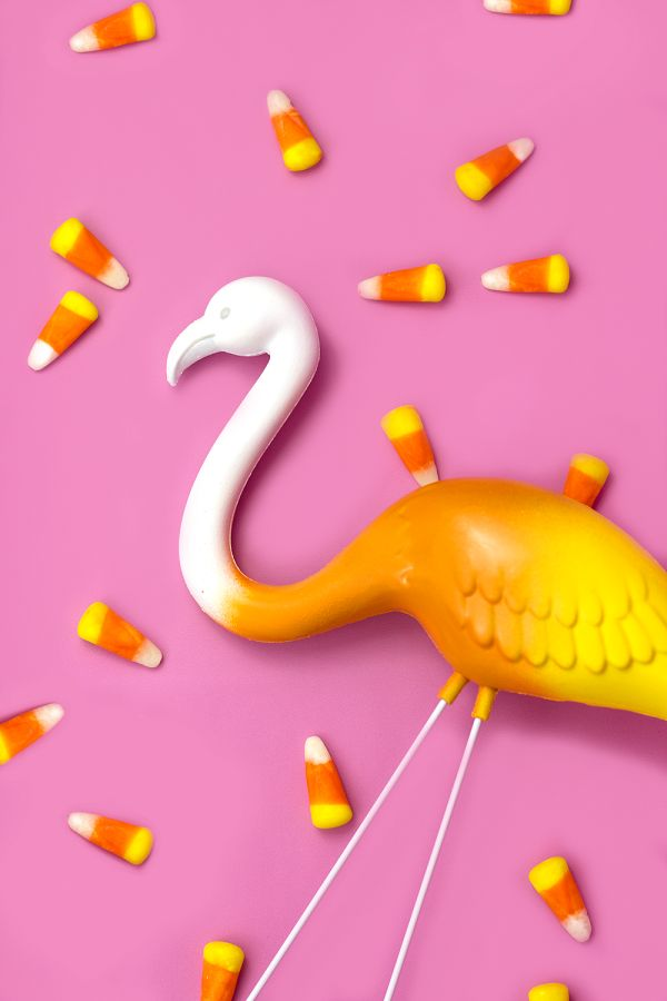 How cute! DIY candy corn flamingos.