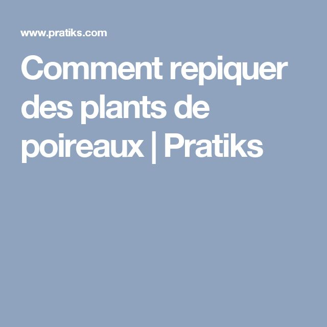 Comment repiquer des plants de poireaux | Pratiks