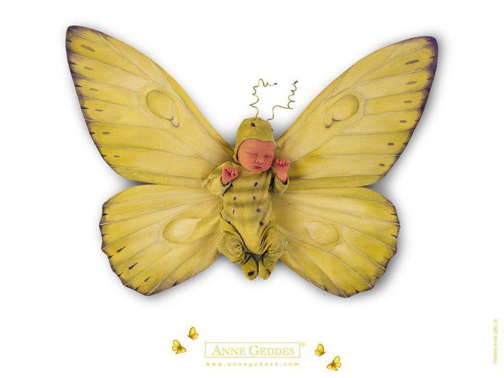 Butterfly Baby Anne Geddes Anne Geddes Photography