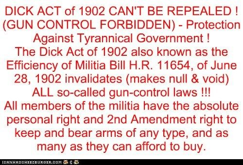 THE TRUTH ABOUT GUN CONTROL, THE DICK ACT OF 1902, BILLS OF ATTAINDER AND EX POST FACTO LAWS 9-28-14 BY P.HULDAH