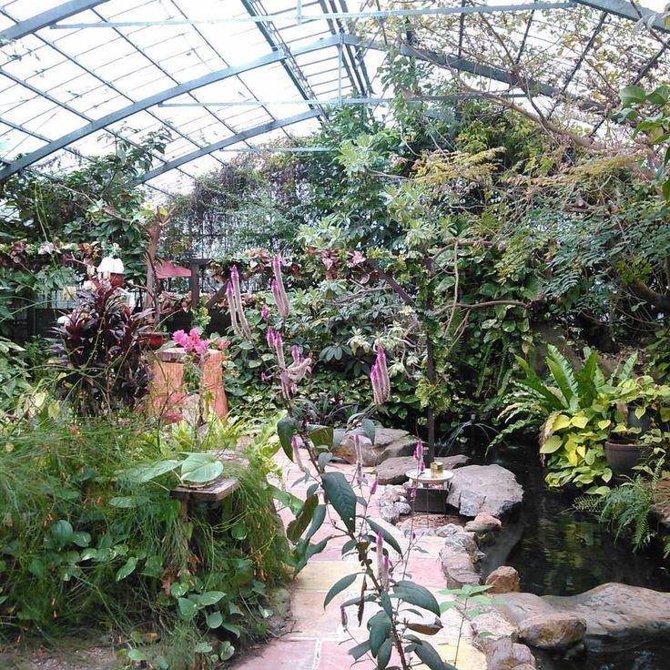 OKINAWAフルーツランドの園内。 園内ではフルーツはもちろん色んな亜熱帯植物を楽しむことができます。 スタンプを集めるアトラクションも楽しめますよ! #OKINAWAフルーツランド (OKINAWAフルーツらんど)