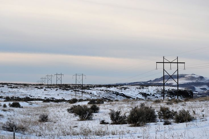 Landscape Photography of Snow-coated Ground With Utility Posts  Free Stock Photo