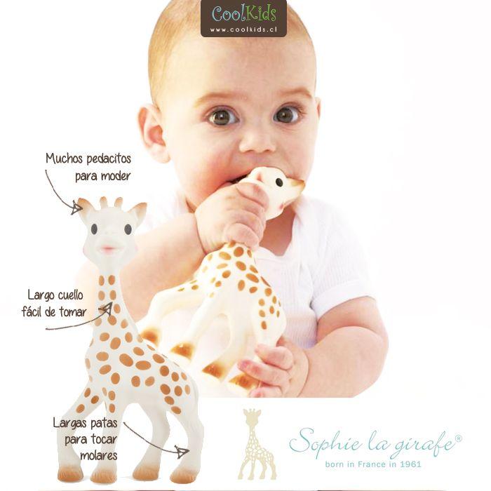 JUGUETE MORDEDOR SOPHIE LA GIRAFFE  Cómpralo en: http://www.coolkids.cl/search?q=sophie  Sophie la Girafe es un juguete mordedor fabricado en base a materiales 100% naturales.  Características: - Uso desde recién nacido - Caucho natural - Tintas en base a alimentos NO-TÓXICAS  Libre de Ftalatos y BPA  Ganador de Mother & Baby Award 204 en la categoría juguetes de bebés menores de 12 meses
