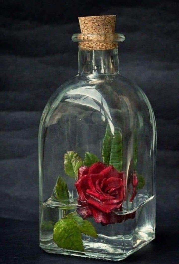 مساء الخير ياهل الغلا والذوق كلام الحب لكم شعر وخواطر جيتكم أمسي والقلب كله شوق ردو المساء أشواق تسعد الخاطر Flower Painting Beautiful Flowers Beautiful Roses