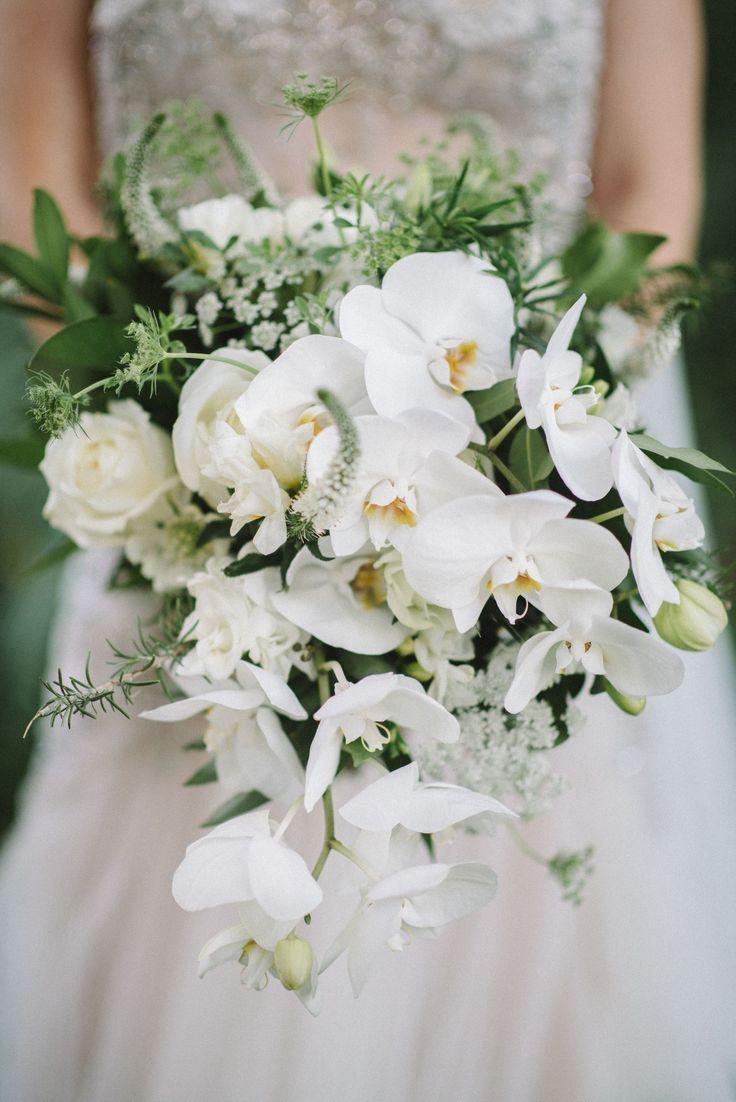 Цветов, букет невесты орхидеи капля