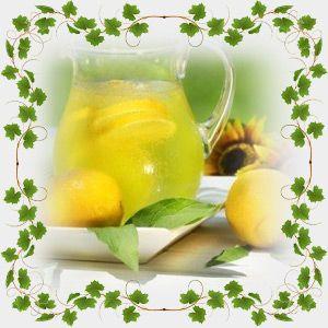 Хотите порадовать своих близких оригинальными напитками? Тогда приготовьте невероятно вкусный лимонад из зеленого чая, или просто сделайте чай с манго.