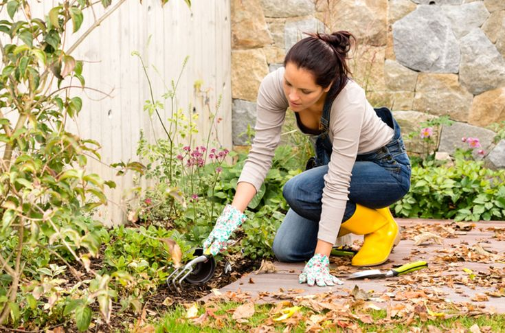 These helpful tips help you avoid back pain while gardening!