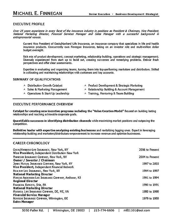 Life Insurance Executive Resume Example  Summary Example For Resume