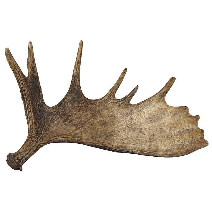 moose antler by regina andrew set of 2 cabin atmosphere