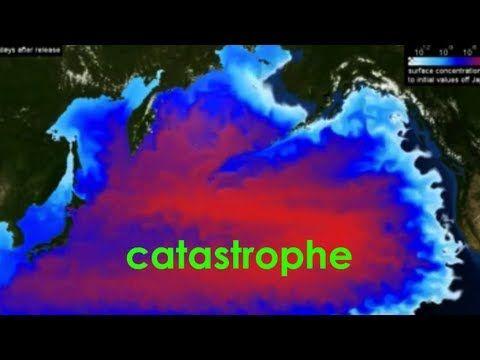 pacific ocean radiation  c5a810dc527d303bab9c3b8787f1dd6c.jpg