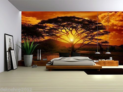 Details About African Sunset Fleece Photo Wallpaper