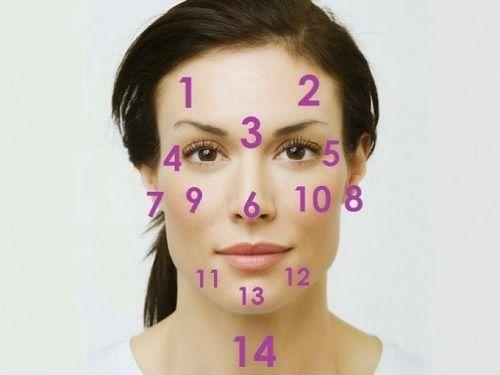 Das Gesicht ist der Spiegel des Körpers Bereich 1 und 2: Verdauungssystem Bereich 3: Leber Bereich 4 und 5: Nieren Bereich 6: Herz Bereiche 7 und 8: Nieren Bereiche 9 und 10: Atemsytem Bereiche 11 und 12: Hormonhaushalt Bereich 13: Magen Bereich 14: Stress