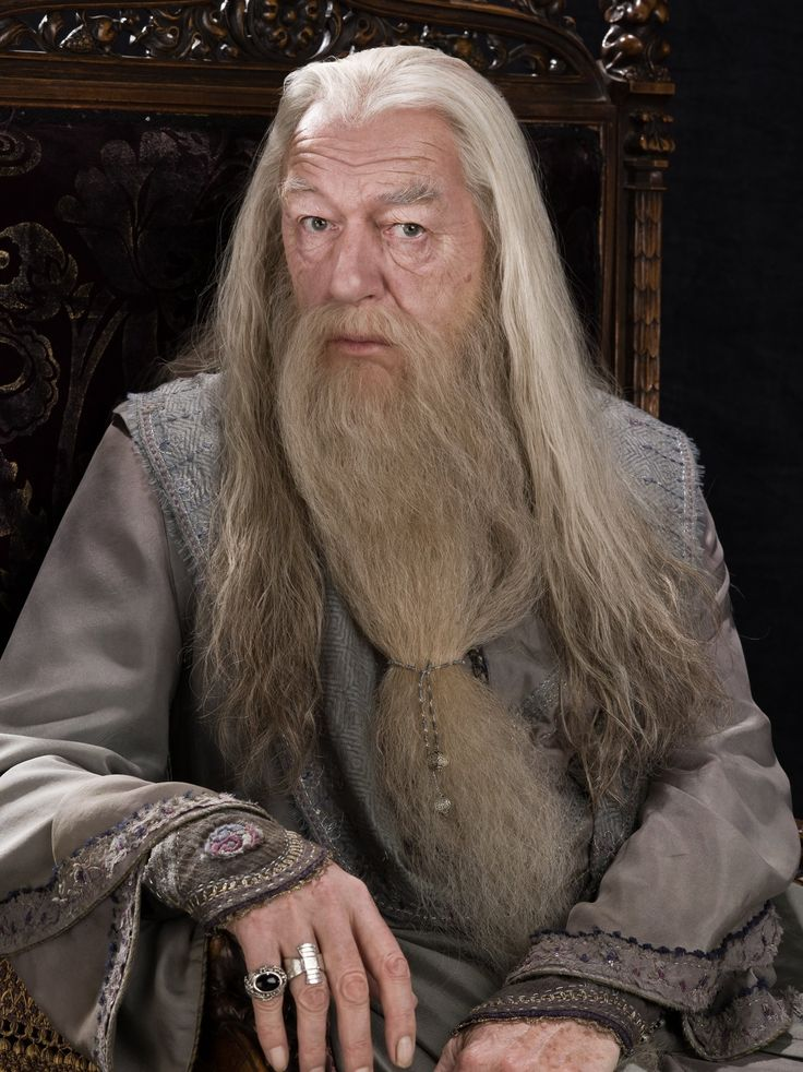 Professor Albus Percival Wulfric Brian Dumbledore,(Michael Gambon) Order of Merlin (first class), Headmaster of Hogwarts School of Witchcraft and Wizardry, Supreme Mugwump of the International Confederation of Wizards, and Chief Warlock of the Wizengamot.