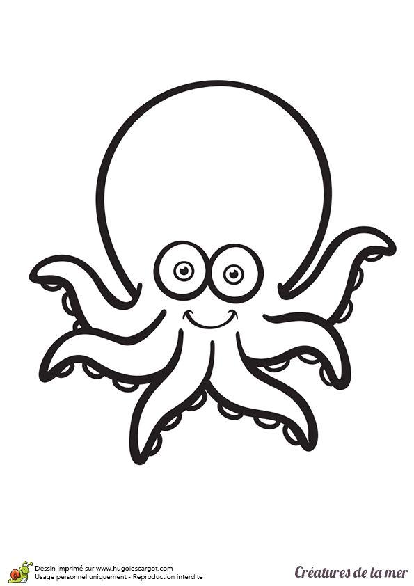 creatures de la mer la pieuvre
