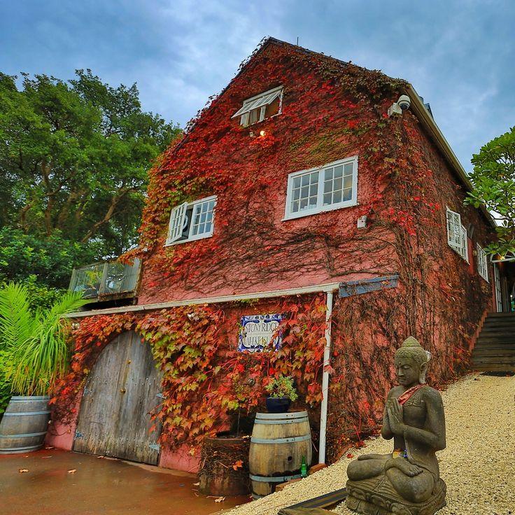 Stonyridge Vineyard is a world-renowned Cabernet-blend winegrower, located on the beautiful island of Waiheke, near Auckland, New Zealand.   More info >> http://www.stonyridge.com/ #stonyridge #vineyard #waiheke #auckland #luxurynz #nz #nzmustdo #newzealand #holiday #travelling #travel #vacation #photooftheday #picoftheday #beautiful
