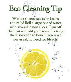eco tips - Google Search