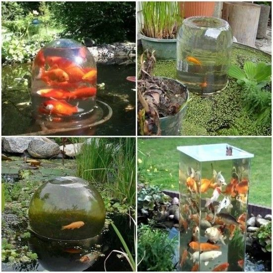 Fish observation tower an easy diy video tutorial fish for Easy pond ideas