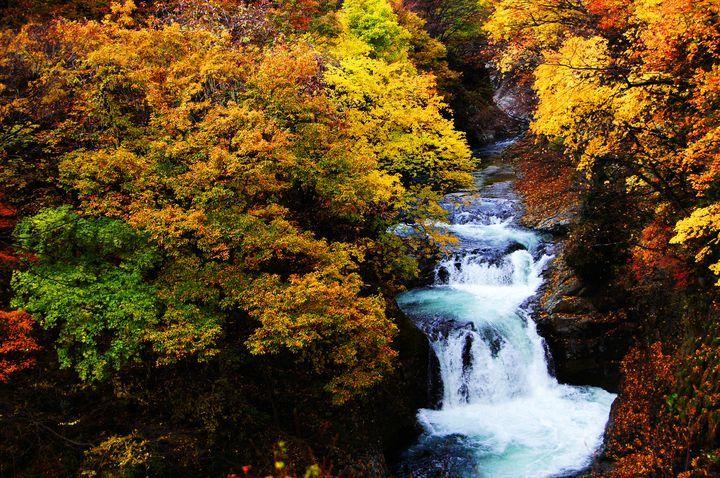 宮城県仙台市の絶景でもある広瀬川上流にかかる壮大な滝です。
