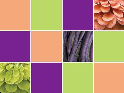 8 best painters palette bluebells violets images on. Black Bedroom Furniture Sets. Home Design Ideas