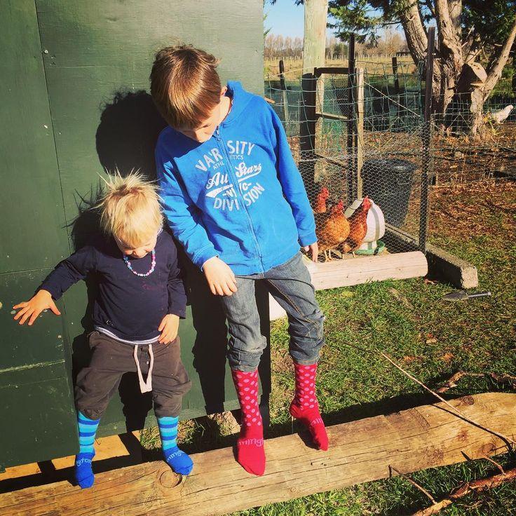 Kids wearing their new Lamington socks. Beautiful merino wool, made in NZ!
