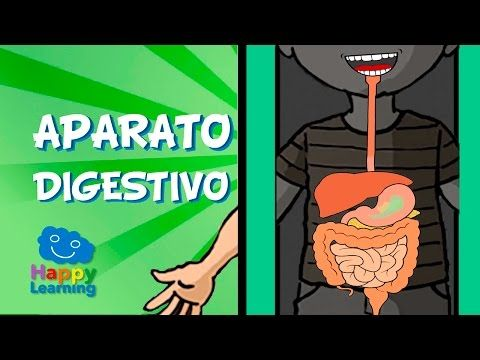 El Aparato Respiratorio | Videos Educativos para Niños - YouTube