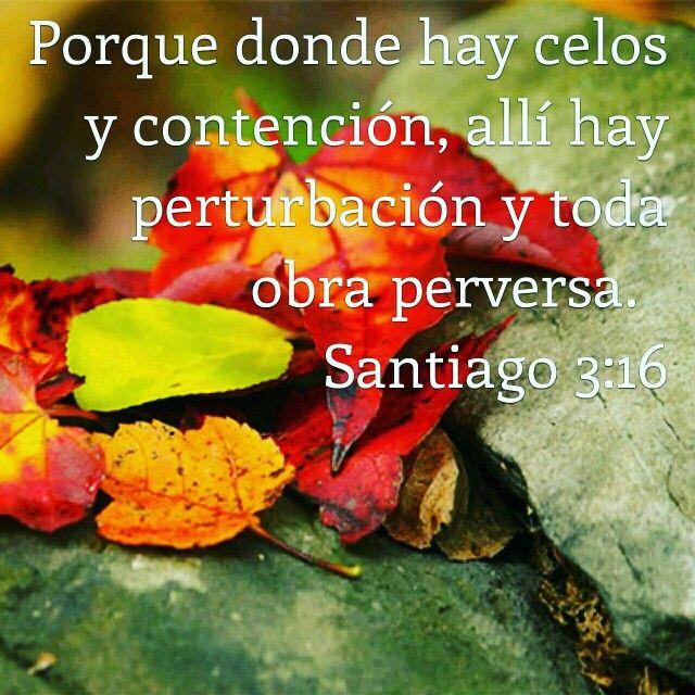 Santiago 3:16