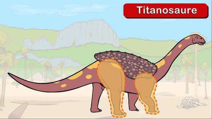 Le dictionnaire sur les dinosaures Le Brachiosaure, Genikids 6:17