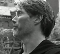 If travel is searching — Mads and Lars Mikkelsen visiting Nørrebro where...