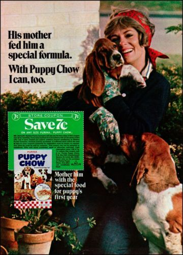 1971 Purina Puppy Chow Dog Food Vintage Photo Print Ad Awesome Basset Photo | eBay