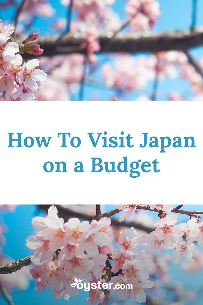 If you've been considering a visit to Japan but don't want to dump your life savings in the process, here are a five tips that will really help you out.