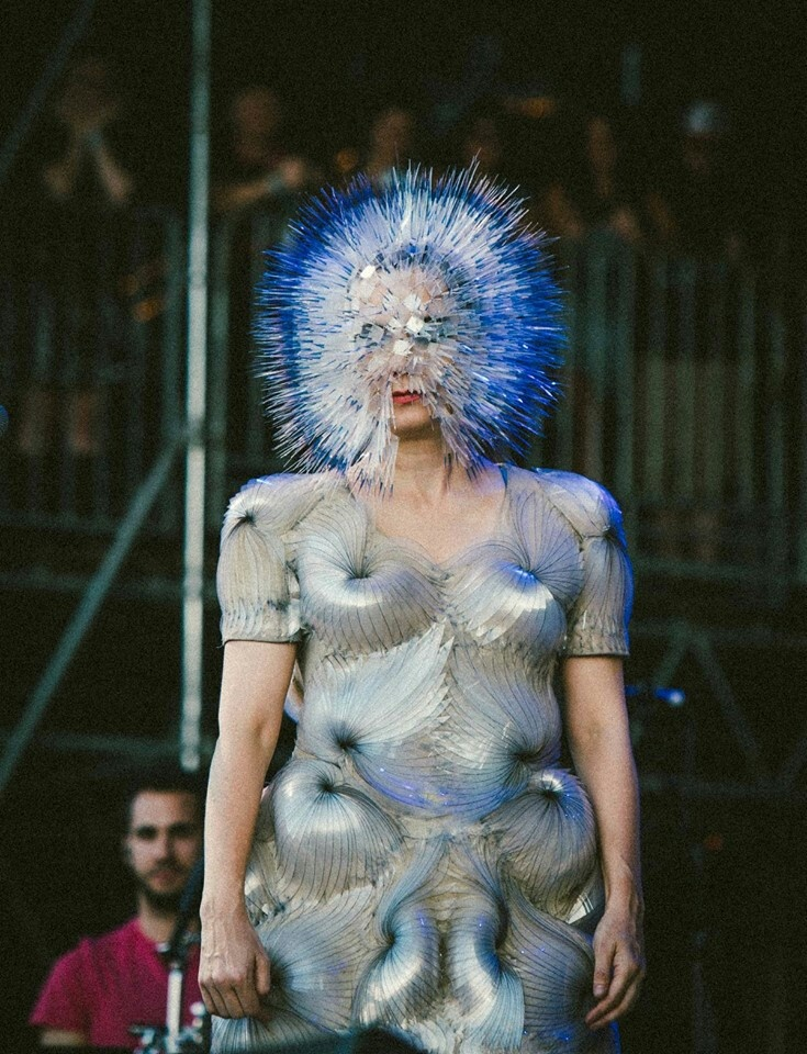 Bjork is one of the most fascinating artists of the modern era. Anyone that can't see that is a fool