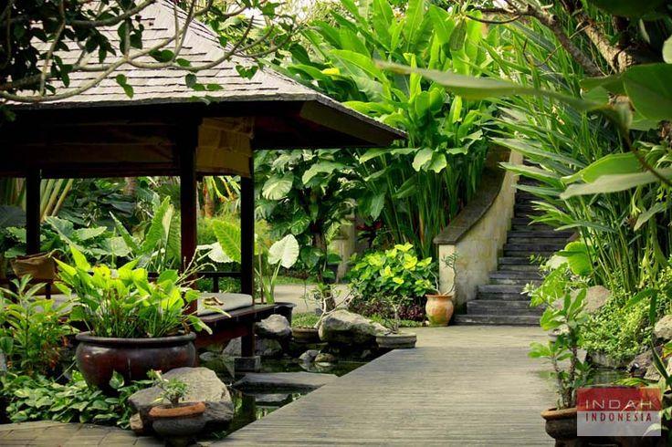 bali garden - Bing Images