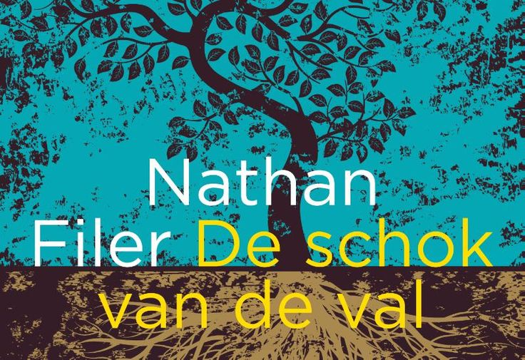 De schok van de val - Nathan Filer