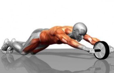 Fitness Online - Ejercita el abdomen con una rueda deslizante