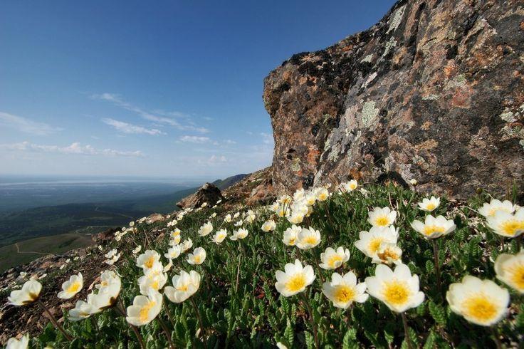 Flattop Mountain Trail, Anchorage, Alaska | 21 randonnées qui vous couperont le souffle