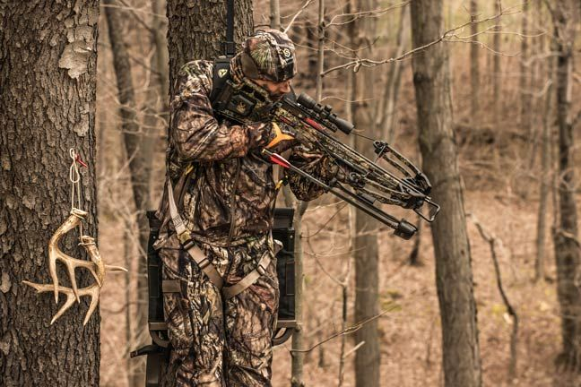 Crossbow Hunting 101: Eight Great Tips To Get You Started - Petersen's Bowhunting