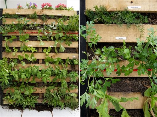 Pallet Vertical Garden   16 Do It Yourself Ideas | Wooden Pallet Furniture