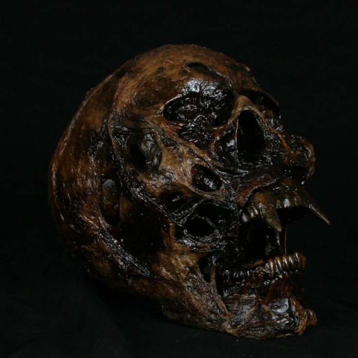 vampire skull extreme realism and detail halloween decorations props - Ebay Halloween Decorations