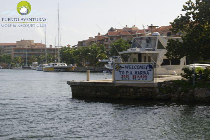 """Sabías que La Marina de Puerto Aventuras es la única marina de servicio completo entre Cancún y Belice y la única en la línea costera mexicana que puede manejar botes grandes. Posee embarcaderos en rangos que van de kanchas de 10' a yates lujosos de 150', veleros de monocasco largo a pequeños trimaranes y de lujosos botes para pesca deportiva a las locales """"pangas"""" abiertas, sin mencionar su propio ferry a Cozumel."""