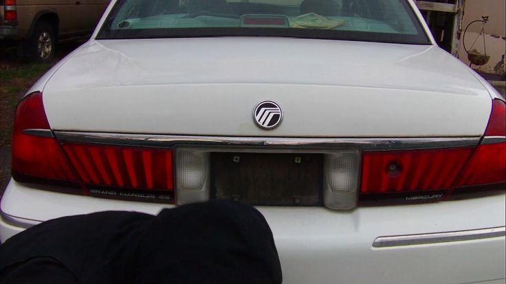 Big Ant Slim Bottom Car License Plate Frame with Screw Caps Aluminum All...