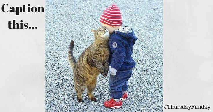 Caption these cuties for #ThursdayThoughts? #cute #cat #toddler Working Mums Aust TheUrbanMum Project Mum Maria Tedeschi