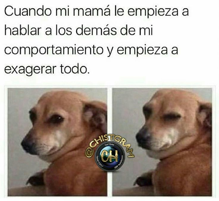 #moriderisa #cama #colombia #libro #chistgram #humorlatino #humor #chistetipico #sonrisa #pizza #fun #humorcolombiano #gracioso #latino #jajaja #jaja #risa #tagsforlikesapp #me #smile #follow #chat #tbt #humortv #meme #chiste #mama #personas #estudiante #universidad