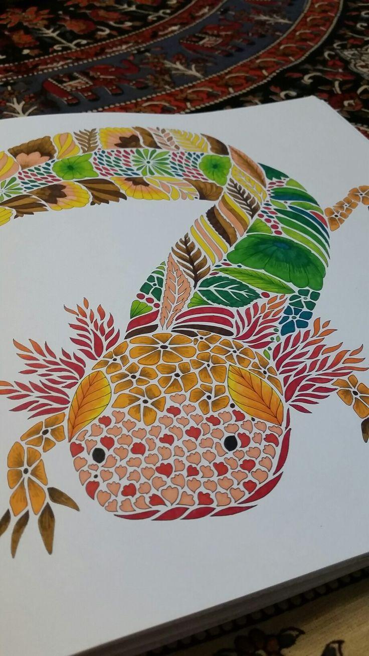 """Axolotl"" Curious Creatures Millie Marotta"