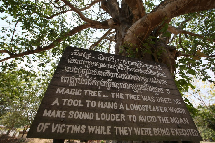 A tree at the Killing Fields.