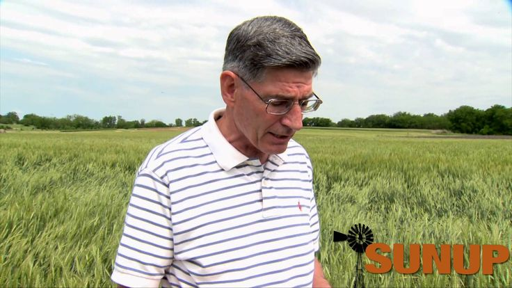 Kim Anderson discusses canola and wheat prices, the Oklahoma crop tour and the influence of foreign markets on prices.