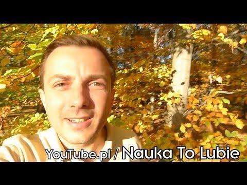 Liście jesienią (okiem fizyka) - Nauka. To lubię. - YouTube