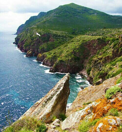 Island of Capraia, Livorno, Tuscany