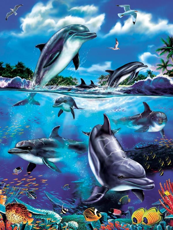 1000 Images About Spa: 1000+ Images About Dolphin Art On Pinterest
