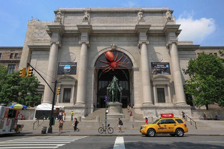 O Museu Americano de História Natural Friends