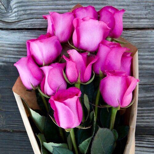 77 best Magda Indigo images on Pinterest | Bright flowers, Glowing ...